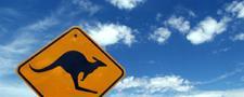 Australische Medische Schapenvacht voorkomt doorliggen